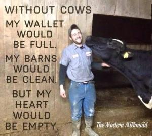 Without Cows
