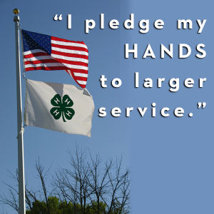 4-H and 9-11