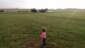 "H has been super interested in the goings-on lately. She loves running into the yard, looking and the ""bombine"" and watching them harvest the fields around our house."