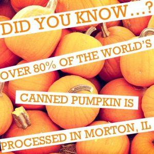 Morton Pumpkins